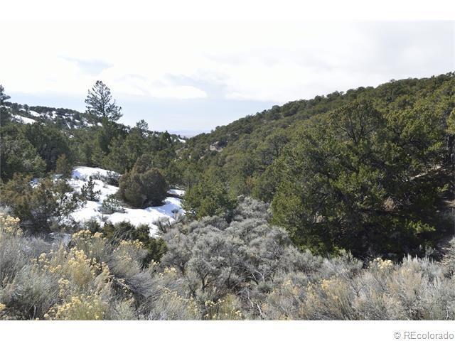 Jaidi Road, Fort Garland, CO 81133 (MLS #6677832) :: 8z Real Estate