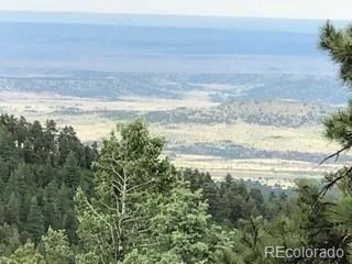 Hwy 78, Beulah, CO 81023 (#6679932) :: Structure CO Group
