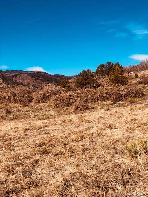 80 Elk Run, Canon City, CO 81212 (#6695476) :: Portenga Properties - LIV Sotheby's International Realty