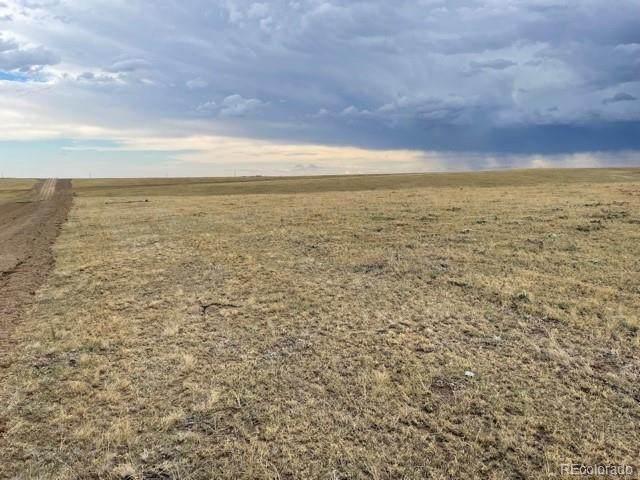 Rolling Vista Trail, Elizabeth, CO 80107 (#6769913) :: milehimodern