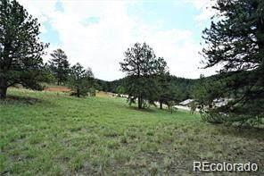 Vista Lane, Pine, CO 80470 (#6805160) :: Venterra Real Estate LLC