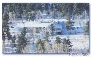 238 Derringer Court, Bailey, CO 80421 (#6816189) :: Colorado Home Finder Realty