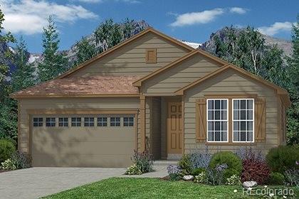 401 Tippen Place, Castle Rock, CO 80104 (#6857875) :: The Peak Properties Group