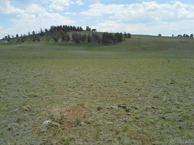121 Hopi Trail, Hartsel, CO 80449 (#6912029) :: Finch & Gable Real Estate Co.