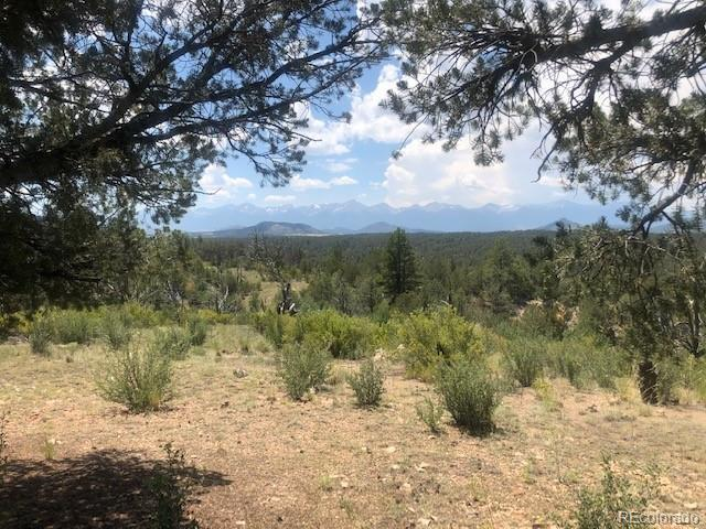 Mic Mac Rd, Cotopaxi, CO 81223 (MLS #6922410) :: 8z Real Estate