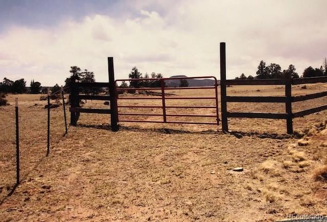 000 County Road 77, Jefferson, CO 80456 (#7032296) :: 5281 Exclusive Homes Realty