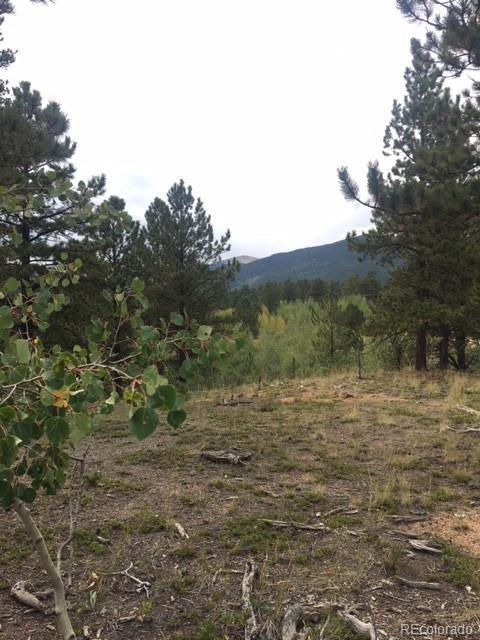 346 Stage Coach Drive, Bailey, CO 80421 (MLS #7121008) :: 8z Real Estate