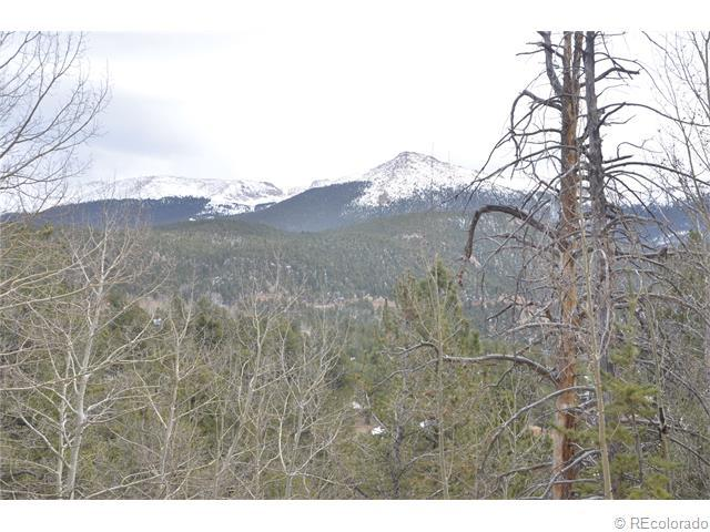 233 Horseshoe Drive, Divide, CO 80814 (#7175863) :: Bring Home Denver