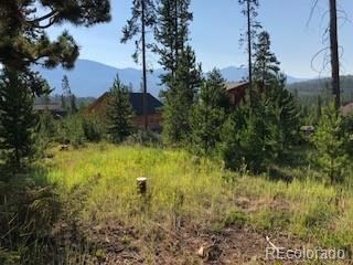 220 County Road 4571, Grand Lake, CO 80447 (#7298040) :: James Crocker Team