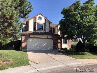 7423 Rattlesnake Drive, Lone Tree, CO 80124 (#7317061) :: Colorado Team Real Estate