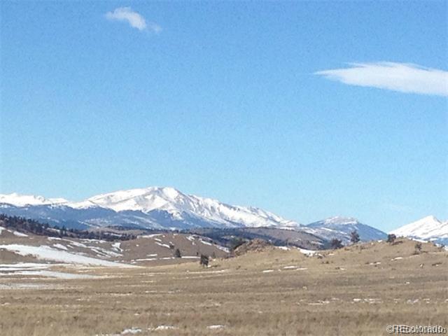 000 Navajo Trail, Hartsel, CO 80449 (MLS #7349432) :: The Biller Ringenberg Group