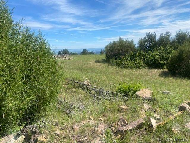 Old Homestead Ln, Beulah, CO 81023 (MLS #7385480) :: Bliss Realty Group