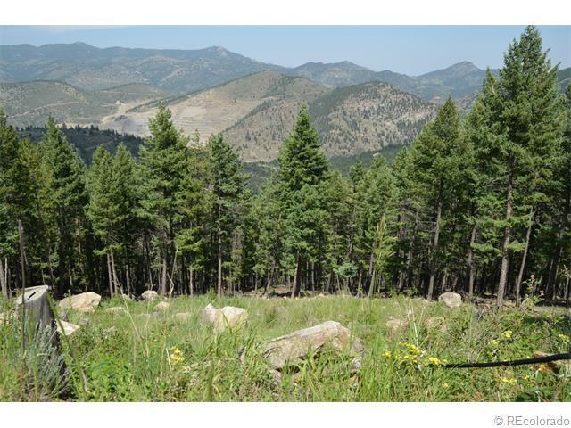 93 Sawmill Creek Road, Evergreen, CO 80439 (MLS #7518067) :: 8z Real Estate