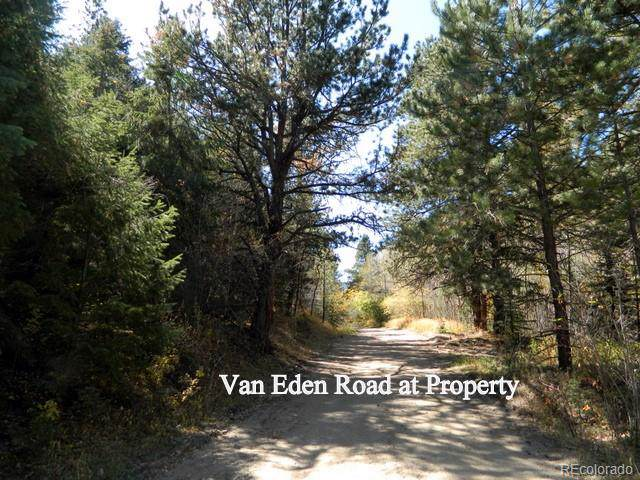 Van Eden Rd.-Humming Bird Mine, Idaho Springs, CO 80452 (MLS #7550124) :: 8z Real Estate