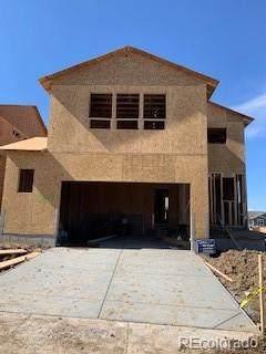 3259 Greenery Drive, Castle Rock, CO 80109 (#7608263) :: Wisdom Real Estate