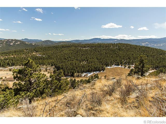 34077 Cactus Drive, Evergreen, CO 80439 (MLS #7624665) :: 8z Real Estate