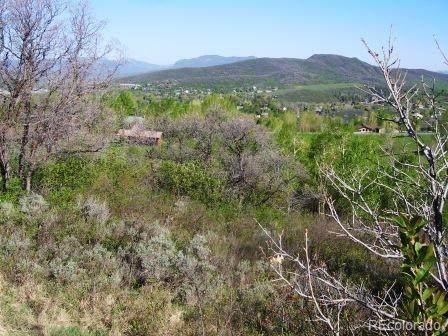 1300 Harwig Circle, Steamboat Springs, CO 80487 (#7665379) :: milehimodern