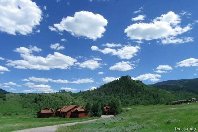 23800 County Road 16 #508, Oak Creek, CO 80467 (#7671669) :: Finch & Gable Real Estate Co.