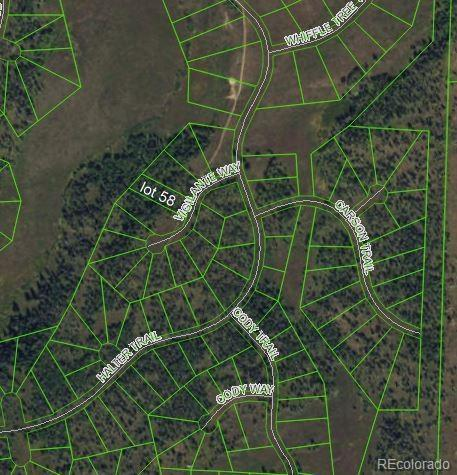 Vigilante Way, Oak Creek, CO 80467 (#7729152) :: The Heyl Group at Keller Williams