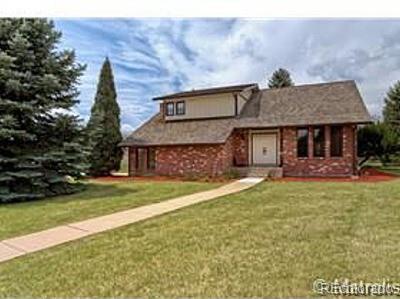 5891 S Wood Sorrel Drive, Littleton, CO 80123 (#7750489) :: Colorado Team Real Estate