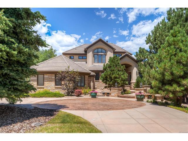 10171 Prestwick Trail, Lone Tree, CO 80124 (MLS #7760041) :: 8z Real Estate