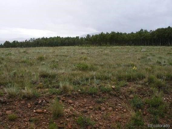 Boreas Circle, Jefferson, CO 80456 (MLS #7808928) :: Find Colorado