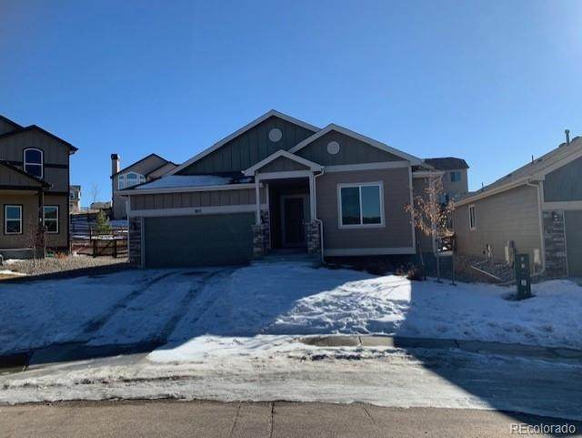 803 Tailings Drive, Monument, CO 80132 (#7937904) :: The Harling Team @ Homesmart