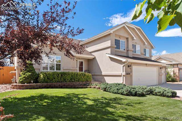 6694 Oasis Butte Drive, Colorado Springs, CO 80923 (#7968461) :: The Peak Properties Group