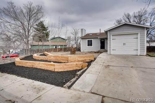 4762 S Taft Street, Morrison, CO 80465 (#8004976) :: Bring Home Denver with Keller Williams Downtown Realty LLC