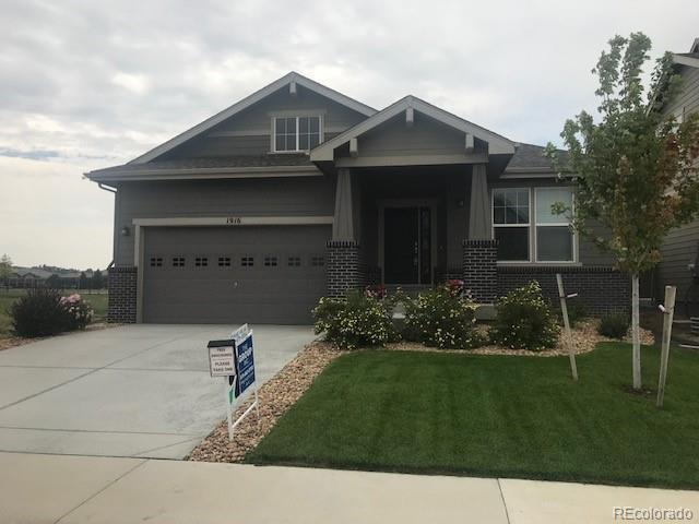 1916 Los Cabos Drive, Windsor, CO 80550 (MLS #8118835) :: 8z Real Estate