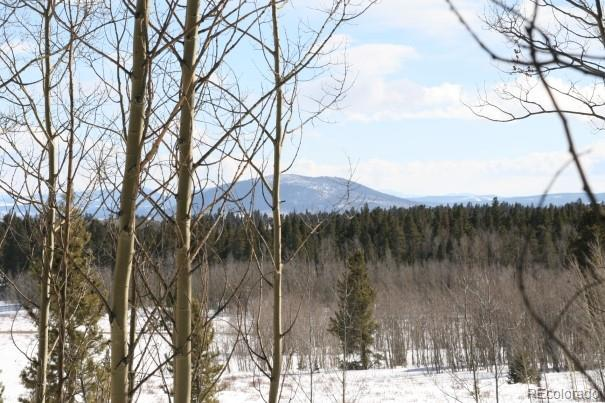 Wheat Way, Fairplay, CO 80440 (MLS #8141259) :: 8z Real Estate
