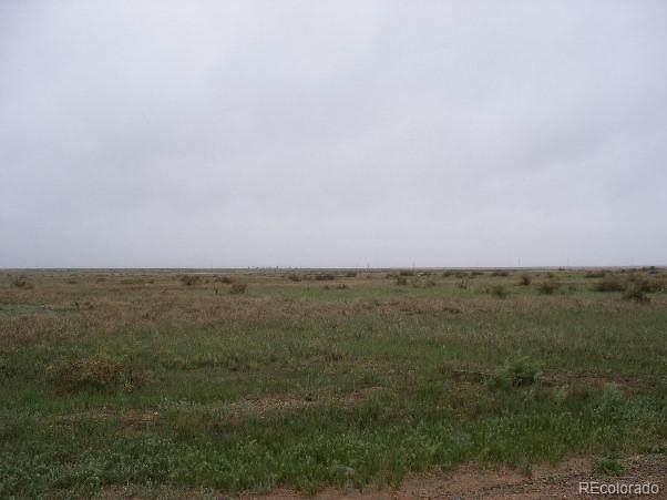 201 Singletree Lane, Hartsel, CO 80449 (#8184865) :: Symbio Denver