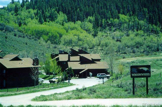 23800 County Road 16 #502, Oak Creek, CO 80467 (MLS #8207617) :: 8z Real Estate