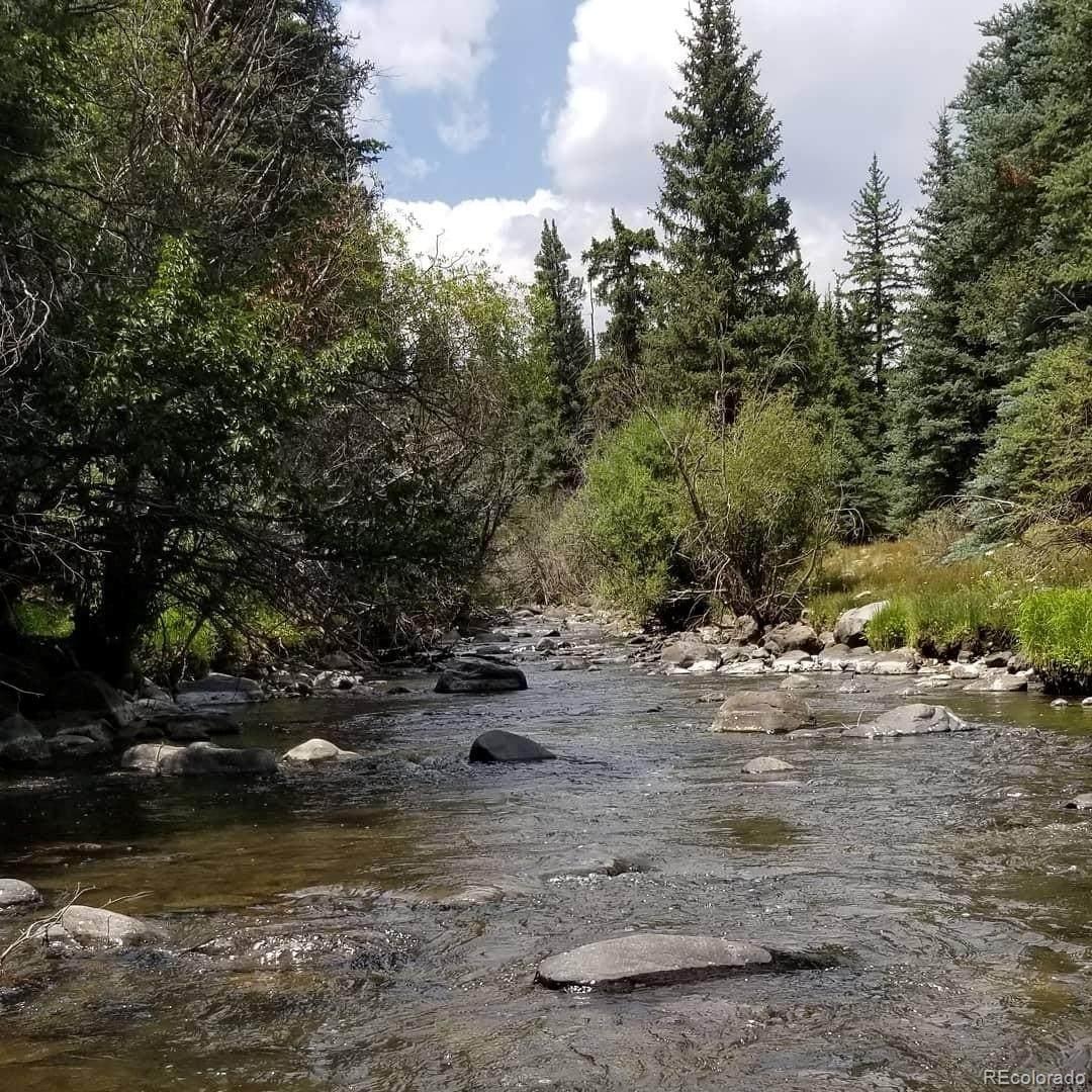 000 Mosquito Creek Road - Photo 1