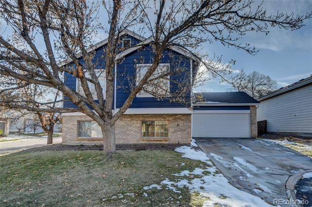 694 Delwood Court, Highlands Ranch, CO 80126 (#8428015) :: Peak Properties Group