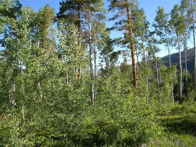 155 Game Trail Road, Silverthorne, CO 80498 (MLS #8470420) :: 8z Real Estate