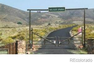 0 Gold Mine Road, Loveland, CO 80538 (#8581052) :: Hudson Stonegate Team
