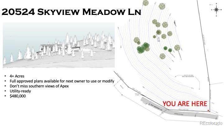 20524 Skyview Meadow Lane - Photo 1
