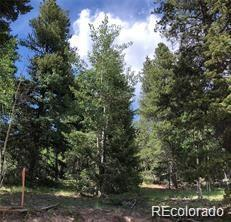11342 Conifer Mountain Road, Conifer, CO 80433 (#8667646) :: The Tamborra Team