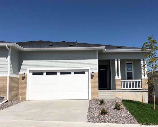 4221 Happy Hollow Drive, Castle Rock, CO 80104 (#8714601) :: The HomeSmiths Team - Keller Williams