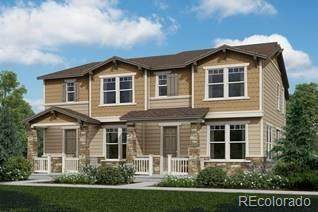 2893 Distant Rock Avenue, Castle Rock, CO 80109 (#8734674) :: The DeGrood Team