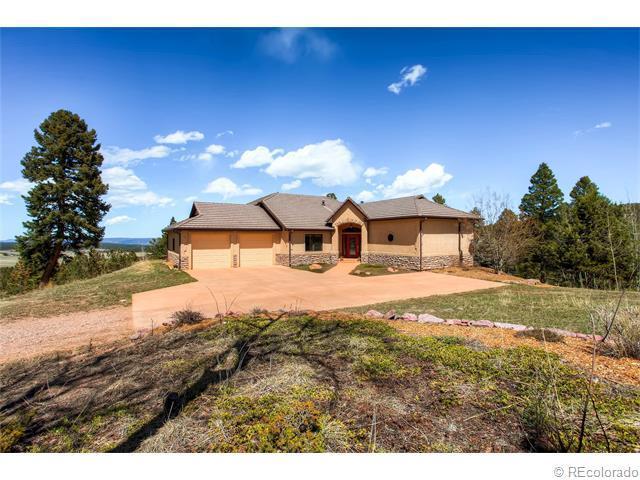 600 Elk Ridge South, Divide, CO 80814 (MLS #8828915) :: 8z Real Estate