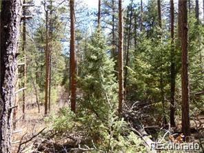 4891 Cheyenne Drive, Larkspur, CO 80118 (#8875498) :: The Peak Properties Group