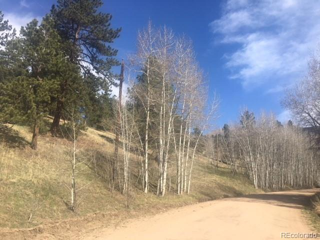 Cline Drive, Bailey, CO 80421 (#8883328) :: Bring Home Denver