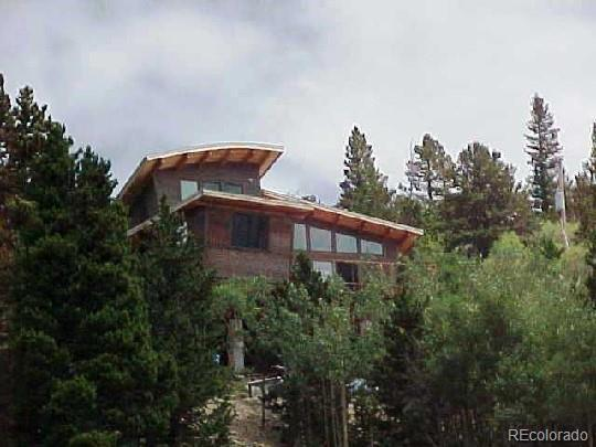 1680 Lamartine Road, Idaho Springs, CO 80452 (#8920101) :: 5281 Exclusive Homes Realty