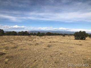 0 County Road 107, Florence, CO 81226 (#8924884) :: The DeGrood Team