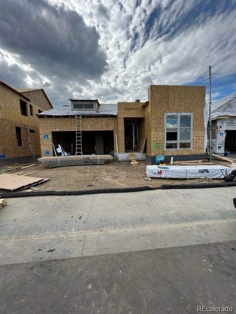 8083 Mount Ouray Road, Littleton, CO 80125 (#8957106) :: The DeGrood Team