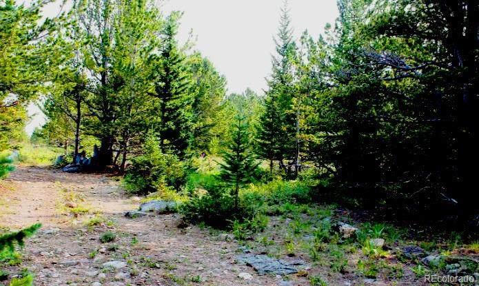 001 Silver Creek Road - Photo 1