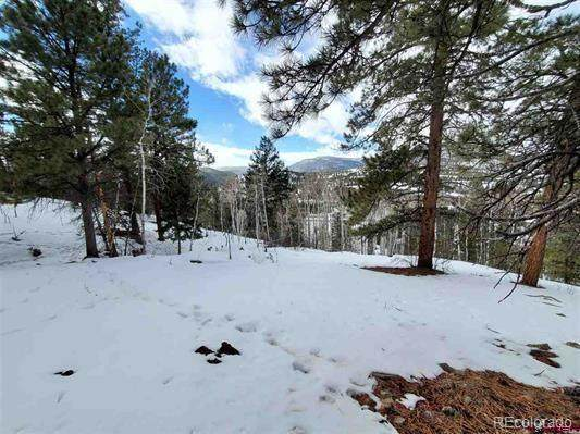 331 N Skyline Drive, South Fork, CO 81154 (#9013080) :: Berkshire Hathaway HomeServices Innovative Real Estate