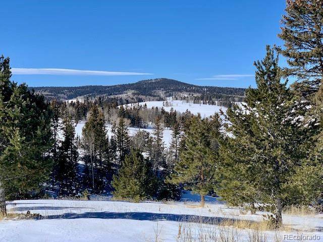 3255 Elk Valley Road, Divide, CO 80814 (MLS #9030705) :: 8z Real Estate